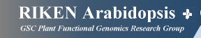RIKEN Arabidopsis Genome Encyclopedia